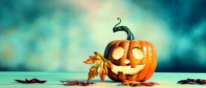 Halloween: Chauve-souris et cie @ Bibliothèque